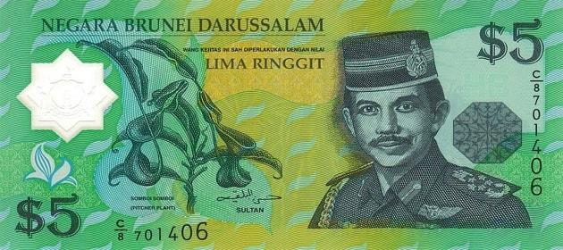 Dolar Brunei Darussalam