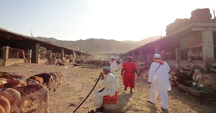 Sejarah kurban pada hari raya Iduladha atau Lebaran Haji
