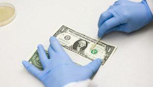 uang sumber penyebaran penyakit